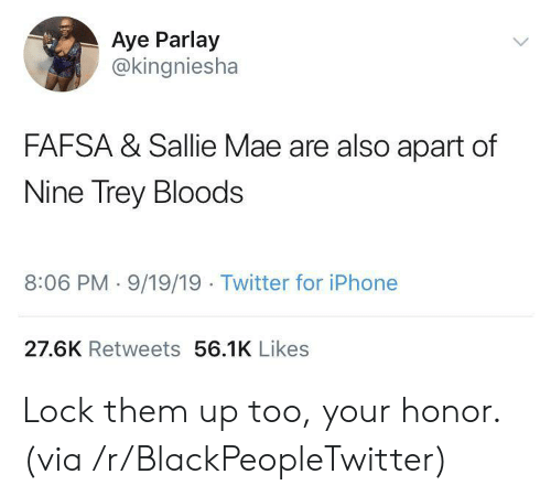 Bloods: Aye Parlay  @kingniesha  FAFSA & Sallie Mae are also apart of  Nine Trey Bloods  8:06 PM 9/19/19 Twitter for iPhone  27.6K Retweets 56.1K Likes Lock them up too, your honor. (via /r/BlackPeopleTwitter)