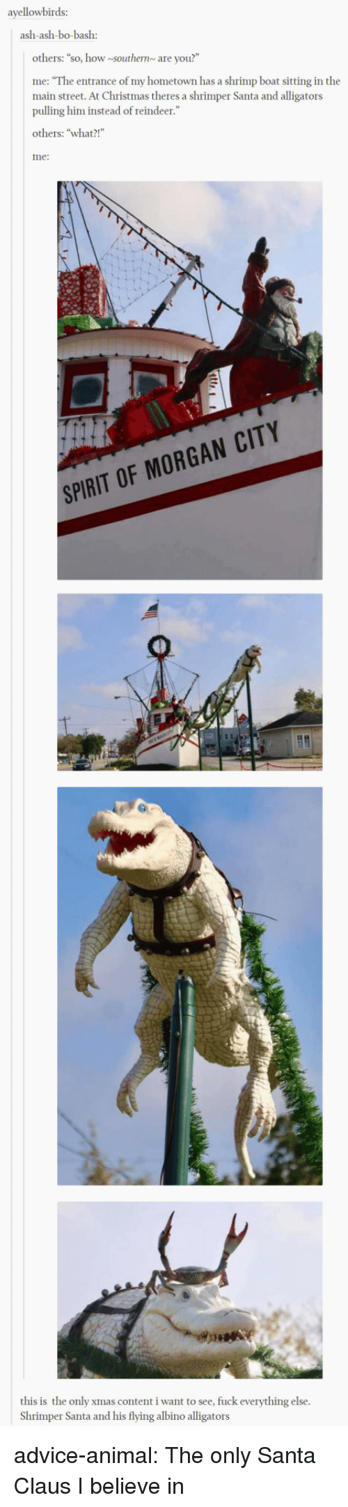 """My Hometown: ayellowbirds:  ash-ash-bo-bash:  others: """"so, how southernare you?""""  me: """"The entrance of my hometown has a shrimp boat sitting in the  main street. At Christmas theres a shrimper Santa and alligators  pulling him instead of reindeer.""""  others: """"what?!  me:  SPIRIT OF MORGAN CITY  this is the only xmas content i want to see, fuck everything else  Shrimper Santa and his flying albino alligators advice-animal:  The only Santa Claus I believe in"""