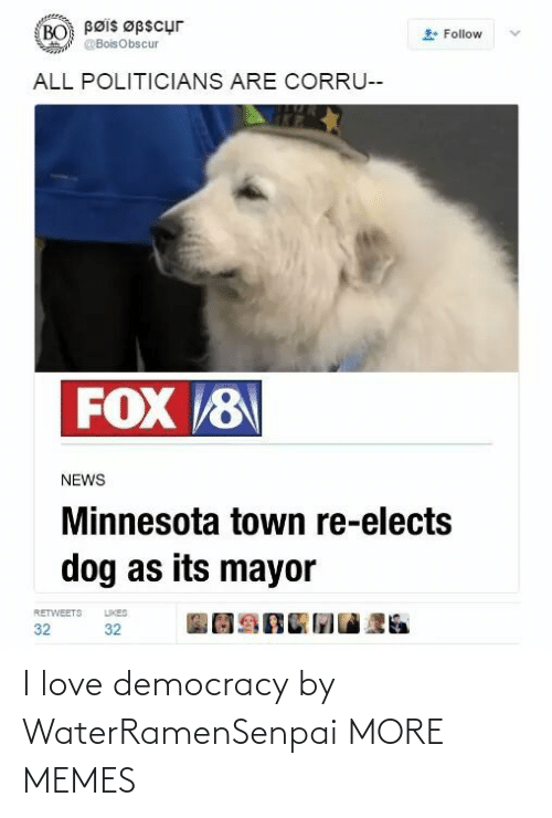 Love Democracy: Bøis Øpscur  BO  Follow  @BoisObscur  ALL POLITICIANS ARE CORRU--  FOX 8  NEWS  Minnesota town re-elects  dog as its mayor  LIKES  RETWEETS  32  32 I love democracy by WaterRamenSenpai MORE MEMES