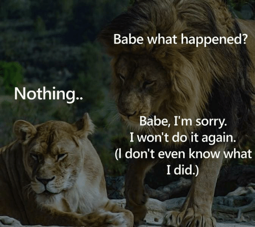 I Wont Do It Again: Babe what happened?  Nothing...  Babe, I'm sorry  I won't do it again.  |(l don't even know what  I did.)