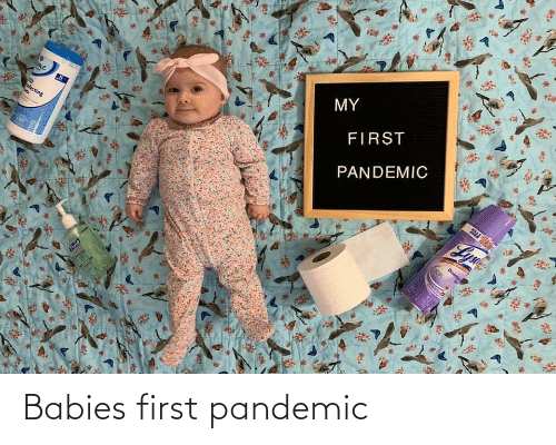 babies: Babies first pandemic