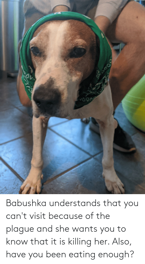 she wants: Babushka understands that you can't visit because of the plague and she wants you to know that it is killing her. Also, have you been eating enough?