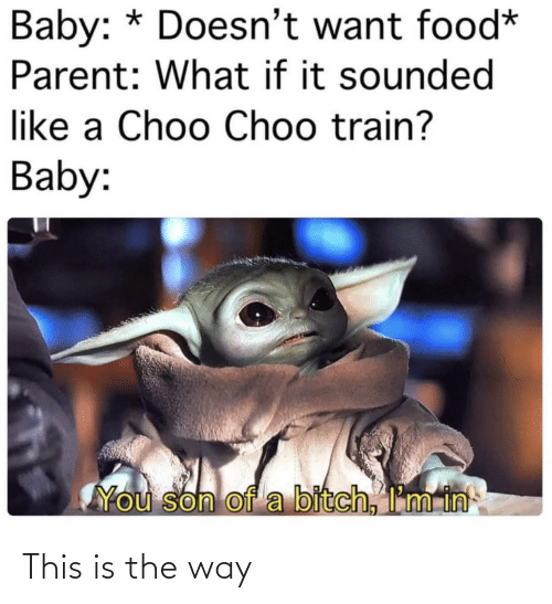 son of a bitch: Baby: * Doesn't want food*  Parent: What if it sounded  like a Choo Choo train?  Baby:  You son of a bitch, I'm in This is the way