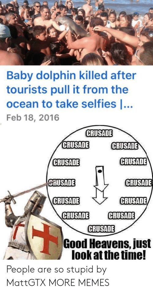 crusade: Baby dolphin killed after  tourists pull it from the  ocean to take selfies ...  Feb 18, 2016  CRUSADE  CRUSADE  CRUSADE  CRUSADE  CRUSADE  CRUSADE  CRUSADE  CRUSADE  CRUSADE  CRUSADE  CRUSADE  CRUSADE  Good Heavens, just  look at the time! People are so stupid by MattGTX MORE MEMES