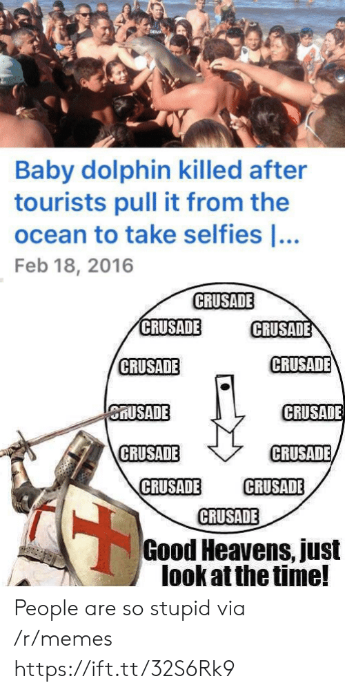 crusade: Baby dolphin killed after  tourists pull it from the  ocean to take selfies ...  Feb 18, 2016  CRUSADE  CRUSADE  CRUSADE  CRUSADE  CRUSADE  CRUSADE  CRUSADE  CRUSADE  CRUSADE  CRUSADE  CRUSADE  CRUSADE  Good Heavens, just  look at the time! People are so stupid via /r/memes https://ift.tt/32S6Rk9