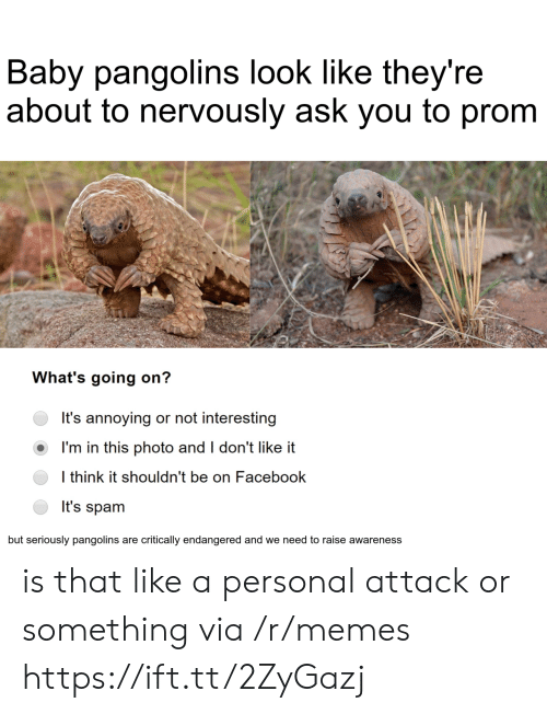 i dont like it: Baby pangolins look like they're  about to nervously ask you to prom  What's going on?  It's annoying or not interesting  I'm in this photo and I don't like it  I think it shouldn't be on Facebook  It's spam  but seriously pangolins are critically endangered and we need to raise awareness is that like a personal attack or something via /r/memes https://ift.tt/2ZyGazj