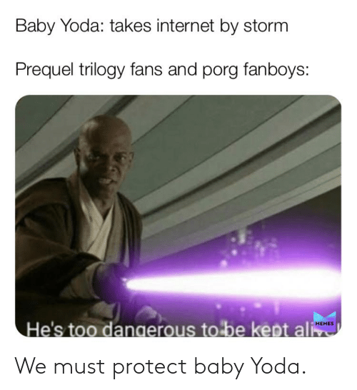 Must Protect: Baby Yoda: takes internet by storm  Prequel trilogy fans and porg fanboys:  He's too dangerous to be kept ali  MEMES We must protect baby Yoda.