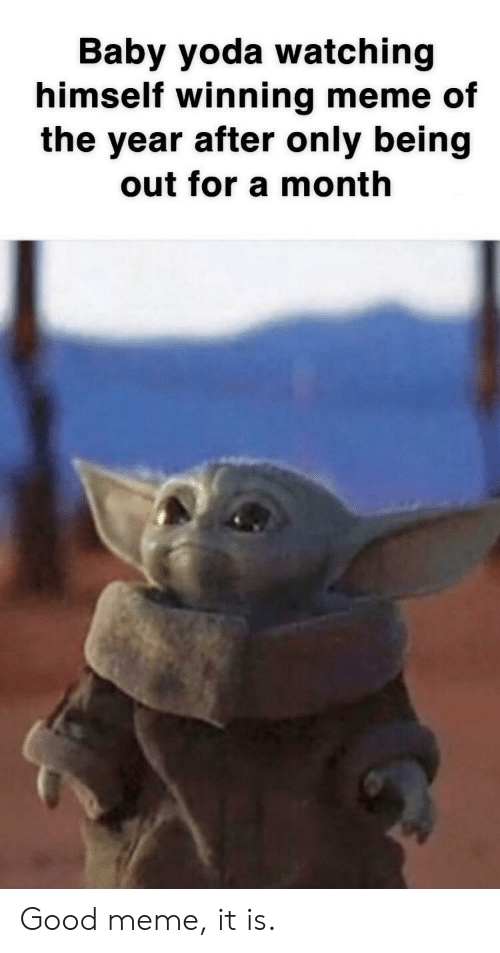 Good Meme: Baby yoda watching  himself winning meme of  the year after only being  out for a month Good meme, it is.