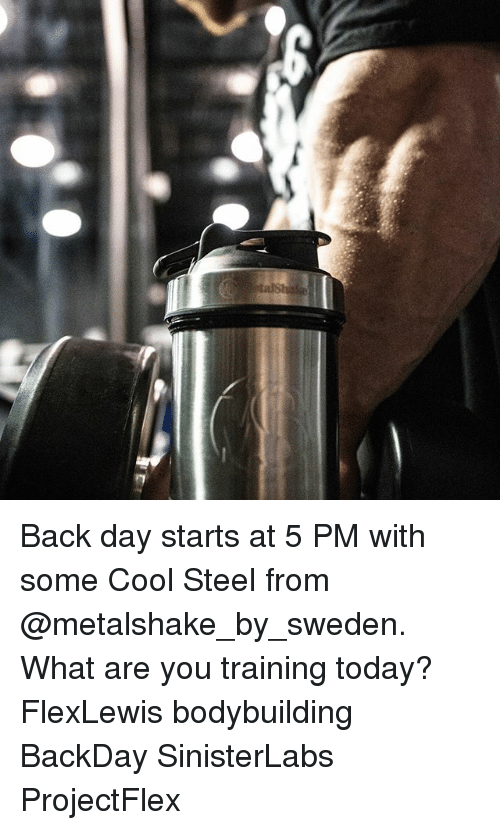 Memes, 🤖, and What Ares: Back day starts at 5 PM with some Cool Steel from @metalshake_by_sweden. What are you training today? FlexLewis bodybuilding BackDay SinisterLabs ProjectFlex