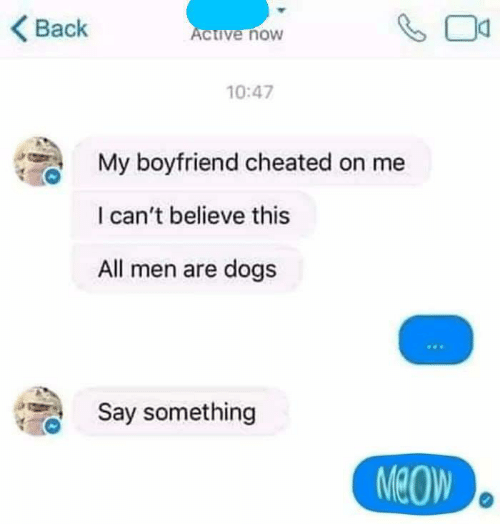 I Cant Believe This: Back  ive noW  10:47  My boyfriend cheated on me  I can't believe this  All men are dogs  Say something  MeOW