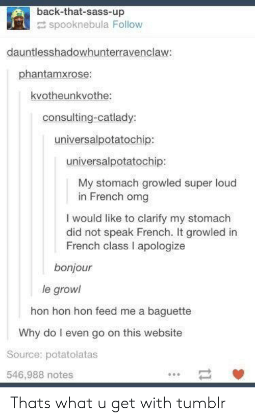 growl: back-that-sass-up  spooknebula Follow  dauntlesshadowhunterravenclaw  phantamxrose:  kvotheunkvothe:  consulting-catlady:  universalpotatochip:  universalpotatochip:  My stomach growled super loud  in French omg  I would like to clarify my stomach  did not speak French. It growled in  French class I apologize  bonjour  le growl  hon hon hon feed me a baguette  Why do I even go on this website  Source: potatolatas  546,988 notes Thats what u get with tumblr