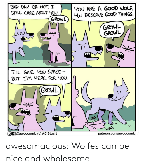 growl: BAD DAY OR NOT, I  STILL CARE ABOUT YOU  YoU ARE A GooD WOLF  You DESERVE GOOD THINGS  GROWL)  GROWL  GROWL  TLL GIVE bu SPACE  BUT IM HERE FOR YOU  GROWL  WAG  WAG  @awoocomic (c) AC Stuart  patreon.com/awoocomic awesomacious:  Wolfes can be nice and wholesome