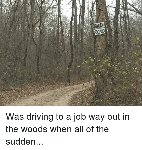 in the woods: BAD  ROAD Was driving to a job way out in the woods when all of the sudden...