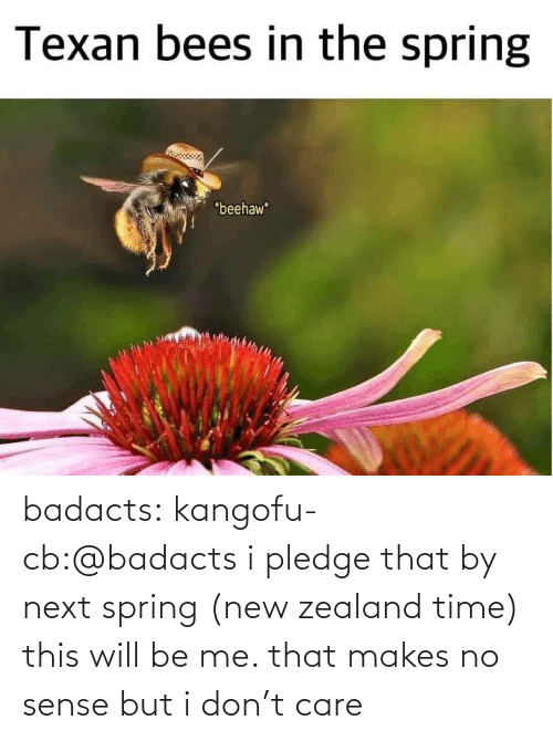 Will Be: badacts:  kangofu-cb:@badacts  i pledge that by next spring (new zealand time) this will be me. that makes no sense but i don't care