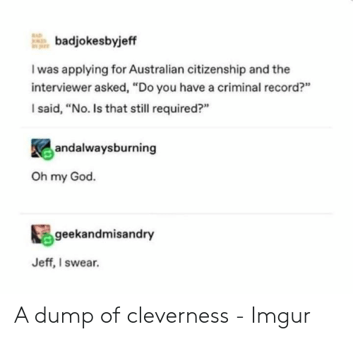 "God, Oh My God, and Imgur: badjokesbyjeff  I was applying for Australian citizenship and the  interviewer asked, ""Do you have a criminal record?""  I said, ""No. Is that still required?""  andalwaysburning  Oh my God.  geekandmisandry  Jeff, I swear. A dump of cleverness - Imgur"