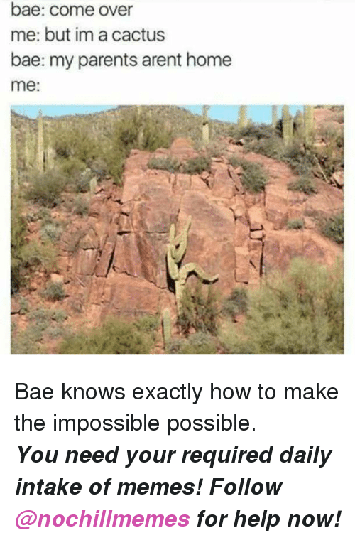 the impossible: bae: come over  me: but im a cactus  bae: my parents arent home  me <p>Bae knows exactly how to make the impossible possible.</p><p><b><i>You need your required daily intake of memes! Follow <a>@nochillmemes</a> for help now!</i></b><br/></p>