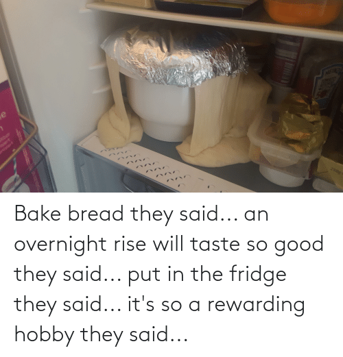 bread: Bake bread they said... an overnight rise will taste so good they said... put in the fridge they said... it's so a rewarding hobby they said...