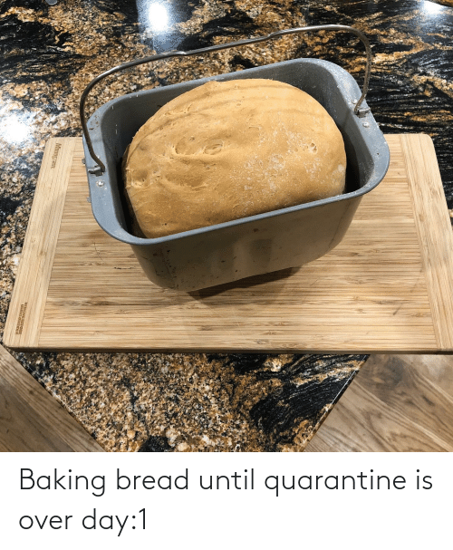 bread: Baking bread until quarantine is over day:1