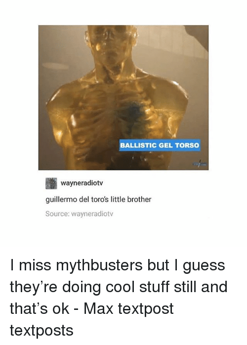 MythBusters: BALLISTIC GEL TORS0  wayneradiotv  guillermo del toro's little brother  Source: wayneradiotv I miss mythbusters but I guess they're doing cool stuff still and that's ok - Max textpost textposts