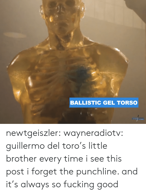 Gel: BALLISTIC GEL TORSO newtgeiszler: wayneradiotv: guillermo del toro's little brother every time i see this post i forget the punchline. and it's always so fucking good