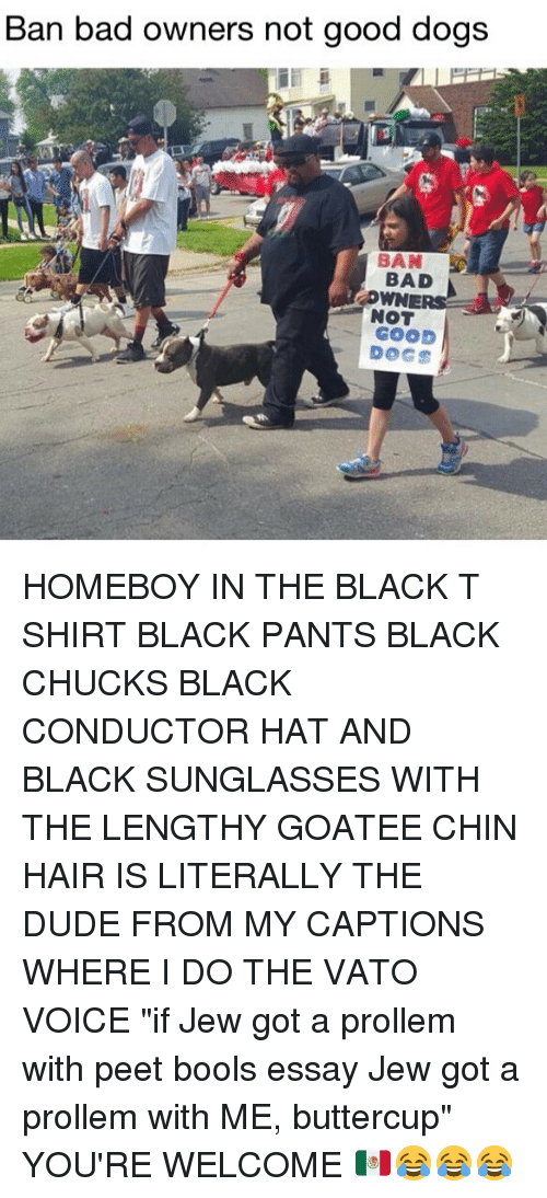 """pantsed: Ban bad owners not good dogs  BAD  NOT  GOOD  DOGS HOMEBOY IN THE BLACK T SHIRT BLACK PANTS BLACK CHUCKS BLACK CONDUCTOR HAT AND BLACK SUNGLASSES WITH THE LENGTHY GOATEE CHIN HAIR IS LITERALLY THE DUDE FROM MY CAPTIONS WHERE I DO THE VATO VOICE """"if Jew got a prollem with peet bools essay Jew got a prollem with ME, buttercup"""" YOU'RE WELCOME 🇲🇽😂😂😂"""