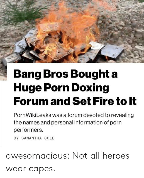 samantha: Bang Bros Bought a  Huge Porn Doxing  Forum and Set Fire to It  PornWikiLeaks was a forum devoted to revealing  the names and personal information of porn  performers  BY SAMANTHA COLE awesomacious:  Not all heroes wear capes.