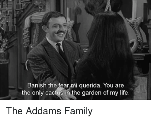 banishes: Banish the fear mi querida. You are  the only cactus in the garden of my life The Addams Family