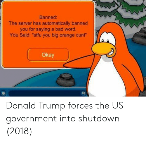 "Bad, Donald Trump, and Stfu: Banned  The server has automatically banned  you for saying a bad word.  You Said: ""stfu you big orange cunt""  Okay Donald Trump forces the US government into shutdown (2018)"