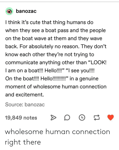 "Tne: banozac  l think it's cute that thing humans do  When they see a boat pass and tne people  on the boat wave at them and they wave  back. For absolutely no reason. They don't  know each other they're not trying to  communicate anything other than ""LOOK!  I am on a boat!! Hello!!!!"" ""I see you!!!!  29 CG  moment of wholesome human connection  and excitement.  Source: banozac  19,849 notesD wholesome human connection right there"