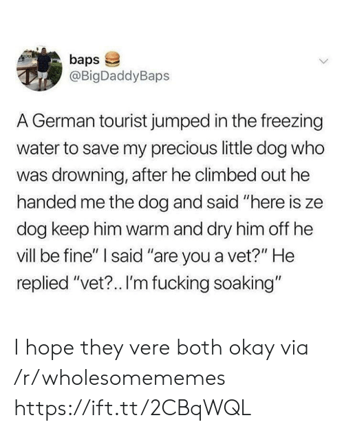 "Tourist: baps  @BigDaddyBaps  A German tourist jumped in the freezing  water to save my precious little dog who  was drowning, after he climbed out he  handed me the dog and said ""here is ze  dog keep him warm and dry him off he  vill be fine"" I said ""are you a vet?"" He  replied ""vet?.. I'm fucking soaking"" I hope they vere both okay via /r/wholesomememes https://ift.tt/2CBqWQL"