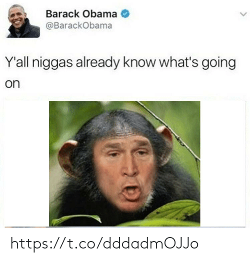 Obama, Barack Obama, and Whats: Barack Obama  @BarackObama  Y'all niggas already know what's going  on https://t.co/dddadmOJJo