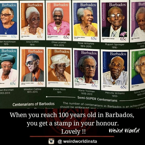 rupert: BarbadosBarbadosBarb  Barbados  Barbados  Barbados  fi  en Hutchinson  lona Griffith  1914-  Olive Licorish  Rose Wiltshire  1914-2015  Vera Gib  915-  1915.  Rupert Springer  1916  1914-2015  Barbados  Barbadosll BarbadosB  Barbados  Barbados Barb  0  Winston Catline  1915-2015  Eleise Rock  1911-  an Blenman  913-2014  Marie Trotman  Melville Williams  Sylvia Mau  1905-2013  1910-201  1910  Semi-SUPER Centenarians  The number of centenarians in Barbados is an a  num  Centenarians of Barbados  an achie cho  should be embraced an..  .  When you reach 100 years old in Barbados,  you get a stamp in your honour.  Lovely !!  Weird World  @ weirdworldinsta