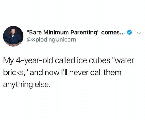 "Dank, Water, and Old: ""Bare Minimum Parenting"" comes  @XplodingUnicorn  My 4-year-old called ice cubes ""water  bricks,"" and now I'll never call them  anything else"