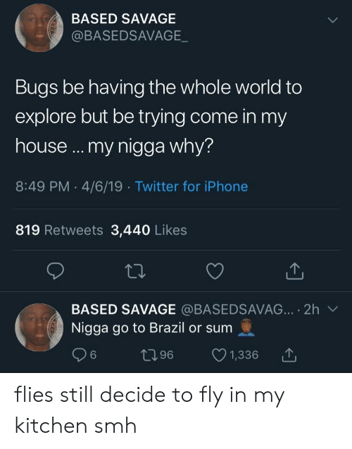Iphone, My House, and My Nigga: BASED SAVAGE  @BASEDSAVAGE  Bugs be having the whole world to  explore but be trying come in my  house .. my nigga why?  8:49 PM 4/6/19 Twitter for iPhone  819 Retweets 3,440 Likes  BASED SAVAGE @BASEDSAVAG.·.. 2h ﹀  Nigga go to Brazil or sum  06 t196 1,336 flies still decide to fly in my kitchen smh