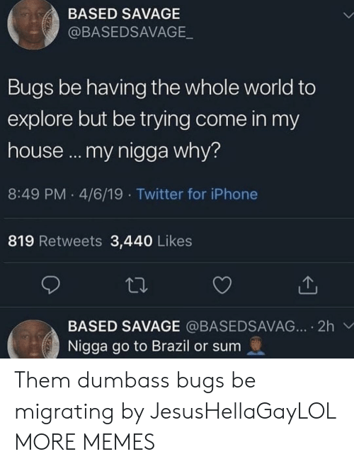 4 6: BASED SAVAGE  @BASEDSAVAGE  Bugs be having the whole world to  explore but be trying come in my  house... my nigga why?  8:49 PM 4/6/19 Twitter for iPhone  819 Retweets 3,440 Likes  BASED SAVAGE @BASEDSAVAG... 2h  Nigga go to Brazil or sum Them dumbass bugs be migrating by JesusHellaGayLOL MORE MEMES