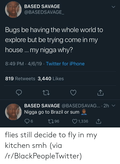 4 6: BASED SAVAGE  @BASEDSAVAGE  Bugs be having the whole world to  explore but be trying come in my  house ... my nigga why?  8:49 PM 4/6/19 Twitter for iPhone  819 Retweets 3,440 Likes  BASED SAVAGE @BASEDSAVAG... 2h  Nigga go to Brazil or sum  t96  6  1,336 flies still decide to fly in my kitchen smh (via /r/BlackPeopleTwitter)