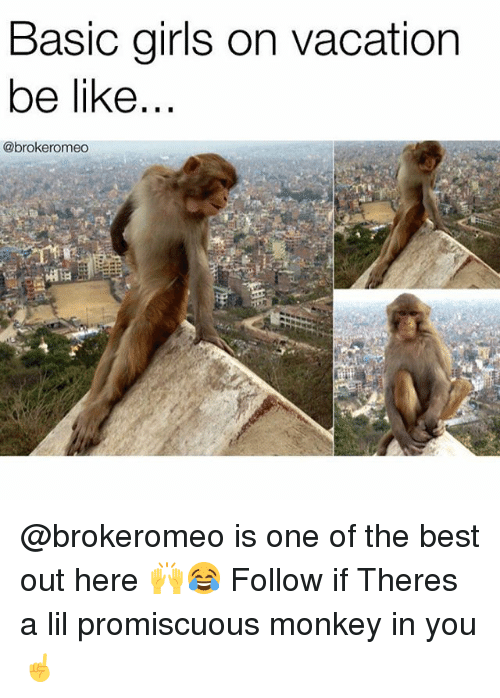 Be Like, Girls, and Best: Basic girls on vacation  be like  @brokeromeo @brokeromeo is one of the best out here 🙌😂 Follow if Theres a lil promiscuous monkey in you☝️
