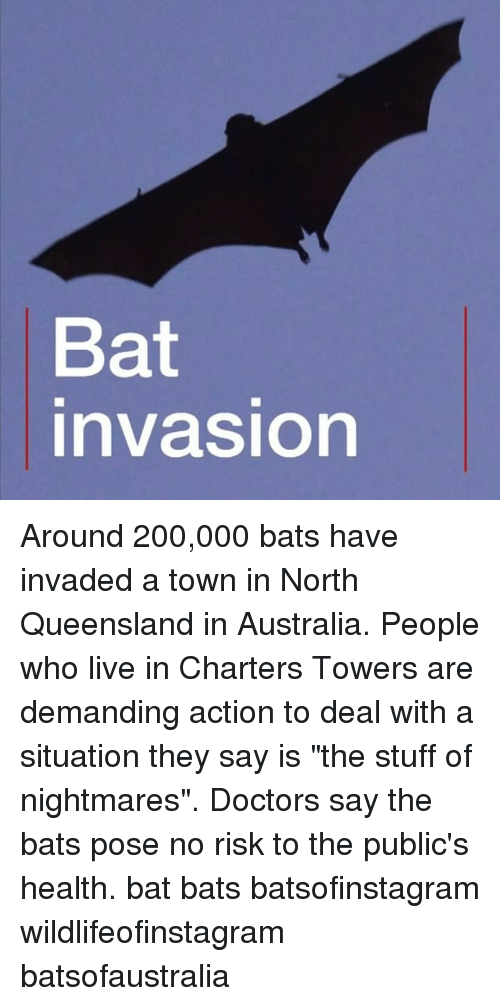 """Bailey Jay, Memes, and Australia: Bat  nvasion Around 200,000 bats have invaded a town in North Queensland in Australia. People who live in Charters Towers are demanding action to deal with a situation they say is """"the stuff of nightmares"""". Doctors say the bats pose no risk to the public's health. bat bats batsofinstagram wildlifeofinstagram batsofaustralia"""