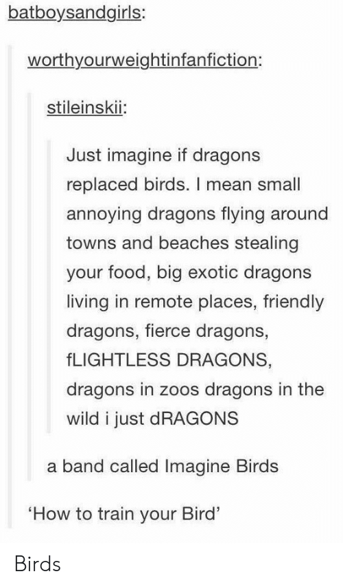 Food, Birds, and How To: batboysandgirls:  worthyourweightinfanfiction:  stileinskii:  Just imagine if dragons  replaced birds. I mean small  annoying dragons flying around  towns and beaches stealing  your food, big exotic dragons  living in remote places, friendly  dragons, fierce dragons,  fLIGHTLESS DRAGONS,  dragons in zoos dragons in the  wild i just dRAGONS  a band called Imagine Birds  How to train your Bird' Birds