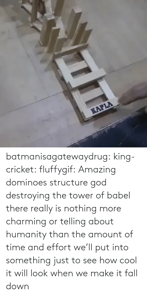 Amount: batmanisagatewaydrug: king-cricket:  fluffygif:  Amazing dominoes structure    god destroying the tower of babel  there really is nothing more charming or telling about humanity than the amount of time and effort we'll put into something just to see how cool it will look when we make it fall down