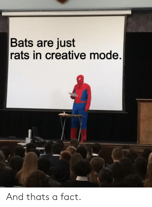 bats: Bats are just  rats in creative mode. And thats a fact.