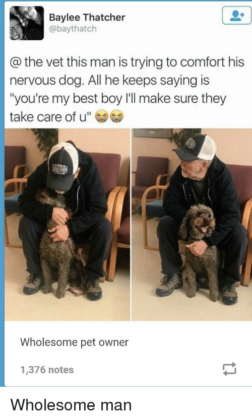 """Best, Wholesome, and Boy: Baylee Thatcher  @baythatch  @the vet this man is trying to comfort his  nervous dog. All he keeps saying is  """"you're my best boy I'll make sure they  take care of u""""  Wholesome pet owner  1,376 notes Wholesome man"""