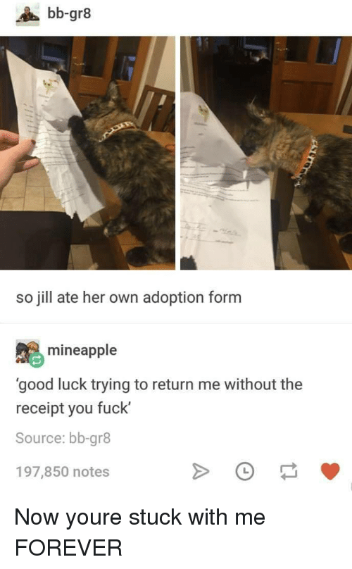 Jill: bb-gr8  so jill ate her own adoption form  mineapple  'good luck trying to return me without the  receipt you fuck'  Source: bb-gr8  197,850 notes Now youre stuck with me FOREVER