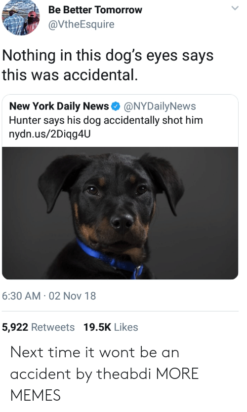Dank, Dogs, and Memes: Be Better Tomorrow  @VtheEsquire  Nothing in this dog's eyes says  this was accidental  New York Daily News Φ @NYDailyNews  Hunter says his dog accidentally shot him  nydn.us/2Diqg4U  6:30 AM 02 Nov 18  5,922 Retweets 19.5K Likes Next time it wont be an accident by theabdi MORE MEMES