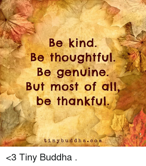 Genuinity: Be kind  Be thoughtful  Be genuine.  But most of all,  be thankful  tiny b u d d h a c o m <3 Tiny Buddha  .