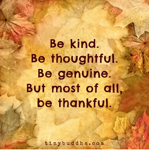 Genuinity: Be kind  Be thoughtful  Be genuine.  But most of all,  be thankful  tiny b u d d h a c o m