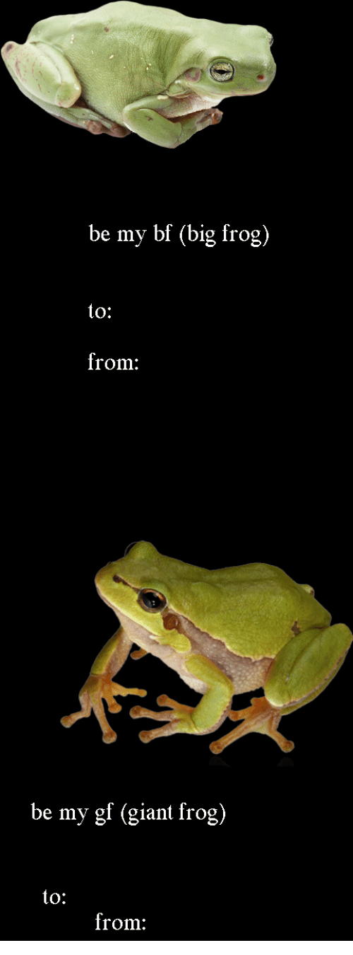 To From: be my bf (big frog)  to:  from:   be my gf (giant frog)  to:  from: