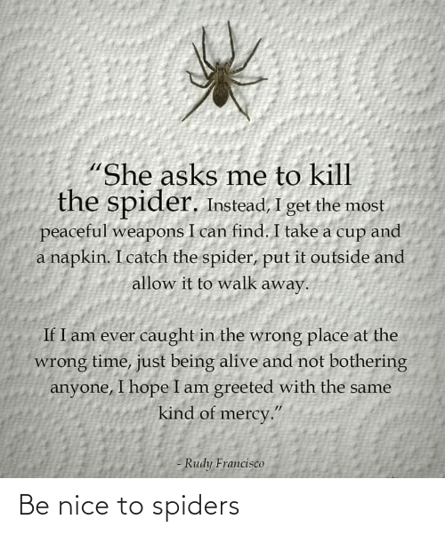 Spiders, Nice, and  Be Nice: Be nice to spiders