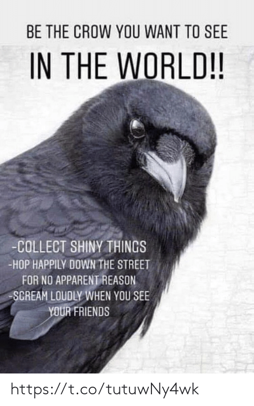 apparent: BE THE CROW YOU WANT TO SEE  IN THE WORLD!!  -COLLECT SHINYTHINGS  -HOP HAPPILY DOWN THE STREET  FOR NO APPARENT REASON  SCREAM LOUDLY WHEN YOU SEE  YOUR FRIENDS https://t.co/tutuwNy4wk