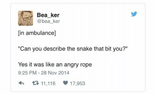 """Yes It Was: Bea ker  @bea_ker  [in ambulance]  """"Can you describe the snake that bit you?""""  Yes it was like an angry rope  9:25 PM-28 Nov 2014  다 11,116  17,953"""